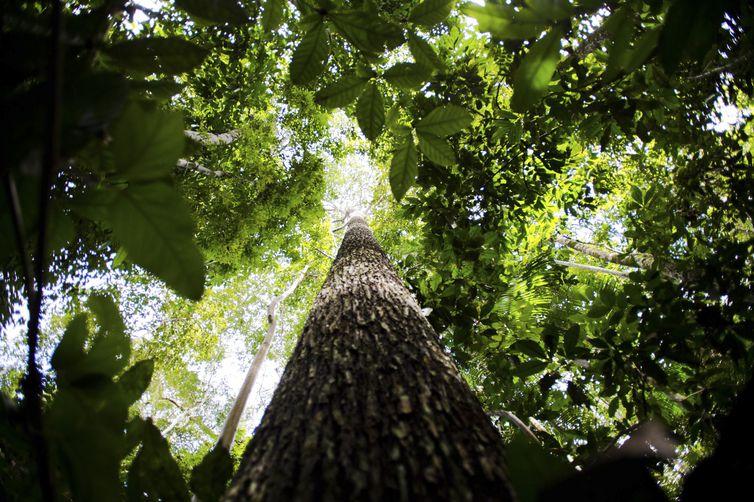 novo-governo-tera-desafio-de-garantir-cumprimento-das-metas-climaticas