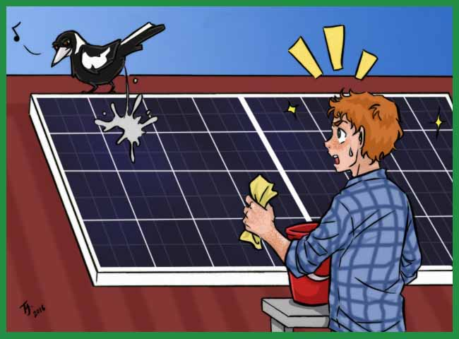 solar-panels-are-hot-idea-but-beware-pitfalls