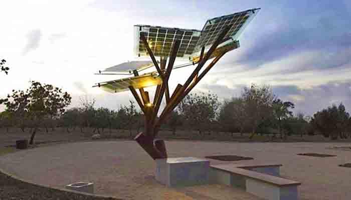 в-житомире-появятся-солнечные-деревь