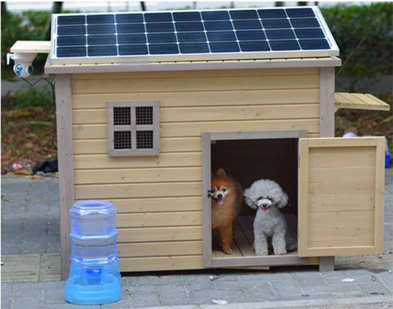 consejos-para-acondicionar-una-caseta-para-perro-con-energia-solar