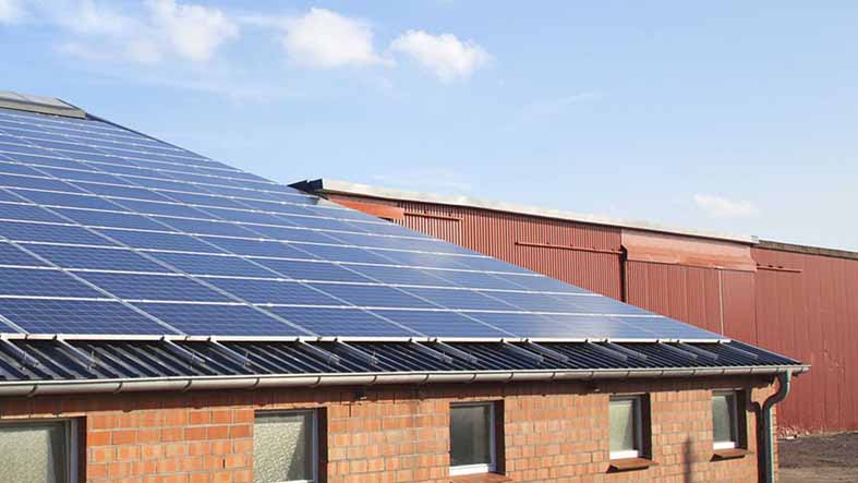 tams-grant-for-solar-panels-on-farms.jpg
