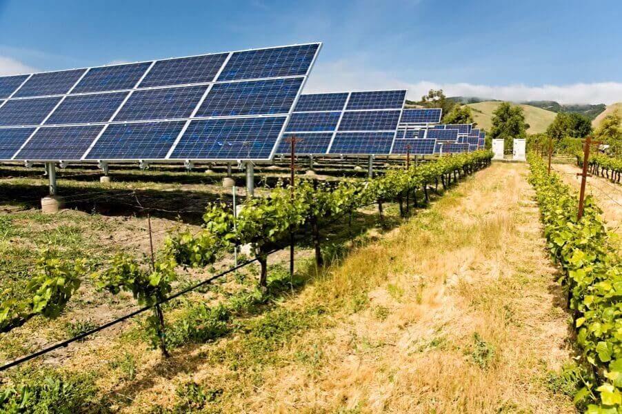 Зеленые ростки грязной энергетики
