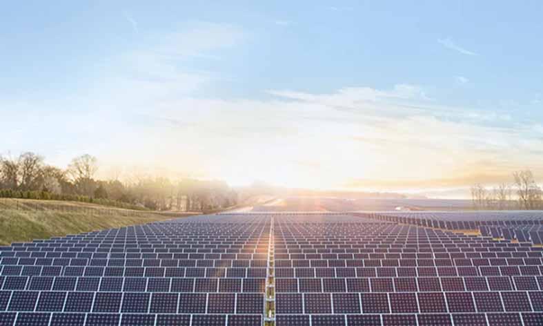 कृषि को मिलेगी 'सौर-वृक्ष' की नयी ऊर्जा